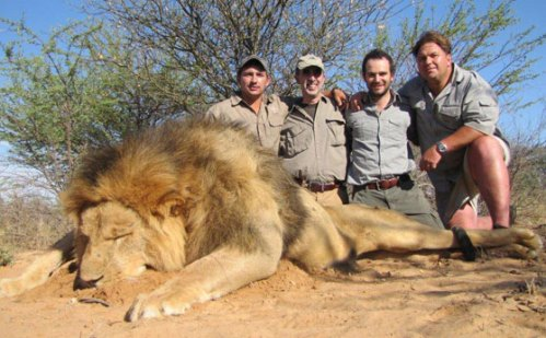 Lion-Hunting-10
