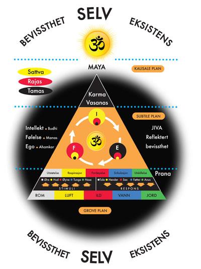 Vedanta-Chart__2_norsk